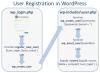 WordPress-User-Registration