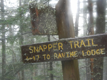 16-56 Snapper Trail