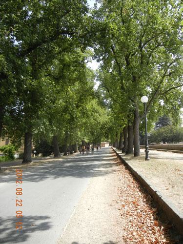 Lucca - City Walls
