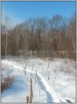 Concatenation Road in Winter